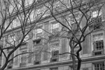 fifth_avenue_bw